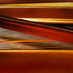 Photo of golden strings of a Steinway grand piano